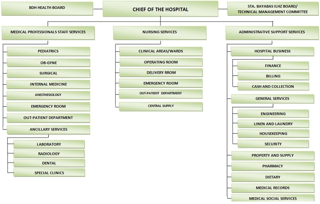 Organizational Chart  Bayawan District Hospital